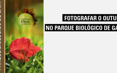 Fotografar o outono no Parque Biológico de Gaia