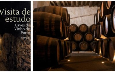 Visita de Estudo – Museu do Vinho do Porto