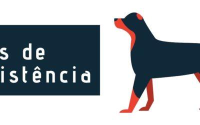 Palestra sobre Cães de Assistência